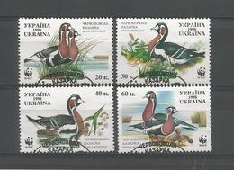 Ukraine 1998 WWF Ducks Y.T. 347/350 (0) - Ukraine
