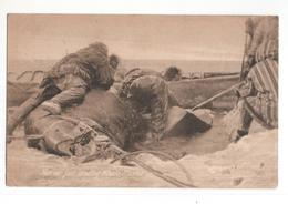 United States Of America - Alaska - Natives Just Landing Whale - 1908 - Etats-Unis