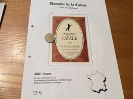 Étiquette De Vin 1995 «CÔTES DU LUBERON - DOMAINE DE LA CAVALE - PAUL & DOMINIQUE DUBRULE - Cucuron (84)» (Cheval) - Côtes Du Rhône