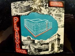 Etiquette HOTEL Vintage _ Hotel PLAZA _ ROME _ ITALIE - Etiquettes D'hotels