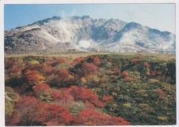 JAPAN - AK 377102 Hakodate - Hokkaido - Japan