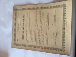 Certificat D'étude Primaire 1903 - Diplome Und Schulzeugnisse