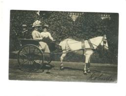 92 Carte Photo Robinson , Le Plessis Robinson Attelage 2 Femmes à Chapeau , Cheval - Le Plessis Robinson