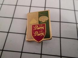 816b Pin's Pins / Beau Et Rare / THEME : ASSOCIATIONS / CAMPEURS CARAVANIERS DE NORMANDIE - Associazioni