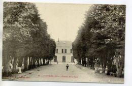 17 CHATELAILLON PLAGE  Beaux Arbres Avenue De La Gare 1920     /D13-2017 - Châtelaillon-Plage