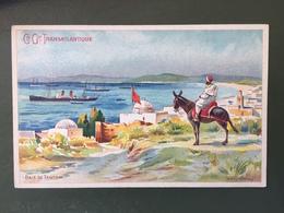 Cie Gale TRANSATLANTIQUE-Carte Publicitaire- Illustration De Lessieux -Baie De Tanger - Steamers