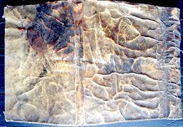 VELIN PARCHEMIN 18 °  ANCIENNE PEAU UTILISEE COMME RELIURE BON ETAT 25 X 16 CM DOCUMENT ARCHIVE - Other Collections