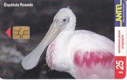 Nº 122 (CHIP NEGRO) TARJETA DE URUGUAY DE UNA ESPATULA ROSADA DE 25$ (BIRD-PAJARO) - Uruguay