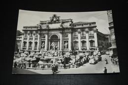 10542             ROMA, FONTANA DI TREVI - Fontana Di Trevi