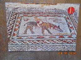 Volublis.Mosaiques Romains. El Bahia 1410 - Morocco