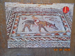 Volublis.Mosaiques Romains. El Bahia 1410 - Maroc