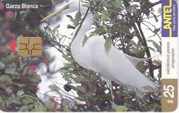 Nº 121 (CHIP ROJO) TARJETA DE URUGUAY DE URUGUAY GARZA BLANCA (BIRD-PAJARO) - Uruguay
