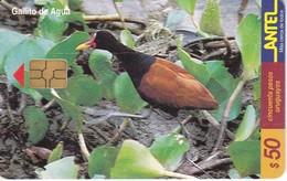 Nº 119 (CHIP NEGRO) TARJETA DE URUGUAY DE UN GALLITO DE AGUA (BIRD-PAJARO) - Uruguay
