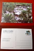(FG.X01) SAN BENEDETTO DEL TRONTO - L'ANTICO E LE PALME - GRAN MERCATO DELL'ANTICO 1999 (ascoli Piceno) 99 - Ascoli Piceno