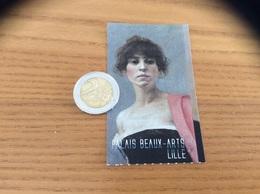 "Ticket D'entrée ""PALAIS BEAUX-ARTS - Alfred Agache Vanité - LILLE (59)"" - Toegangskaarten"