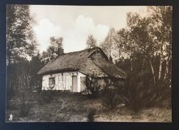 "PEER - 20,5x14,5 Cm - ORIGINELE FOTO - ""De Oude Kempen"" - 1902 - Edmond JAMINÉ - Leemen Huisje - Plaggenhut - Otros"