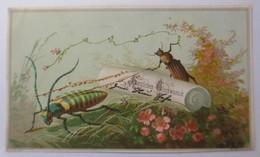Neujahr, Oblate Aus Einem Freundschaftsbuch Jahr 1870  ♥(70418) - Old Paper