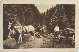 V 73497 - Postcards