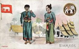 Thailande - Siam - Siamese - Thailand