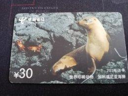 CHINA SHANGHAI SEA LION    CARD Used **1154** - China