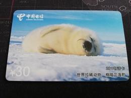 CHINA SHANGHAI BABY SEAL     CARD Used **1155** - China