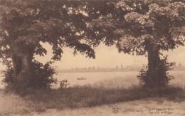 DIKKEBUS / IEPER / ZICHT NAAR HET DORP  1934 - Ieper