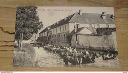 PONTARLIER : Baignade Dans Le Doubs  .................... OF-4661 - Pontarlier