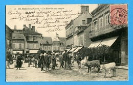 18 - Cher -  Sancoins - Le Marche Aux Veaux  (0850) - Sancoins