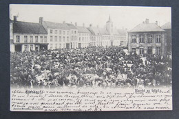 Carte Postale Turnhout Marché Au Bétail 1905 - Turnhout