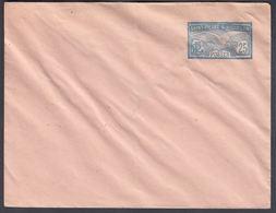 1909. SAINT-PIERRE-MIQUELON. ENVELOPE 25 C. Seagull. 145 X 112 Mm.  () - JF321937 - St.Pierre Et Miquelon