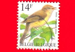 BELGIO - Usato - 1995 - Uccelli Di Buzin - Luì Grosso - Phylloscopus Trochilus - 14 - 1985-.. Birds (Buzin)