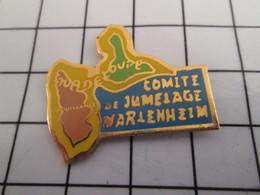 816c Pin's Pins / Beau Et Rare / THEME : VILLES / GUADELOUPE COMITE DE JUMELAGE DE VARLENHEIM ? Jumelage France/ France? - Transports