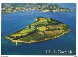 CPM..56..L'ILE DE GAVRINIS..AU FOND LARMOR BADEN - Unclassified
