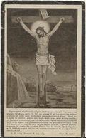 DP. PELAGIE MASSCHELEIN ° LEDEGHEM 1857 - + 1929 - Religion & Esotérisme