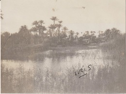 PH26 - TUNISIE - OASIS DE  TELMINE - 1906 - Guerre, Militaire