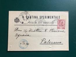 VITTORIA (RAGUSA)  REGIA CANTINA SPERIMENTALE  VIVAI DI VITI AMERICANE  1903    UVA   VINO - Vittoria