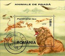 Löwen 2000 Rumänien Block 316 O 3€ Raub-Katze Bei Der Jagd Bloque Hoja Fauna Bloc WWF S/s Wildlife Sheet Bf Romania - Used Stamps