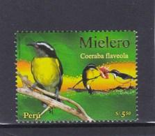 Pérou 1682 O 2007 Coereba - Passereaux