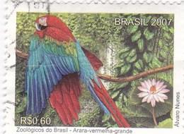 Brésil 2993 O 2007 Ara - Perroquets & Tropicaux