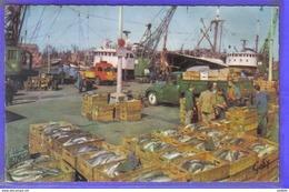 Carte Postale 62. Boulogne-sur-mer  Débarquement Du Poisson  Chalutier  Saint-Louis Armement Poret Et Lobez - Boulogne Sur Mer