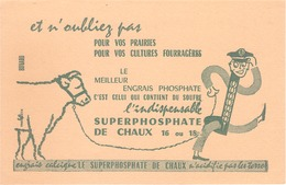 FRANCE - Buvard - Agriculture - Elevage - Le Superphosphate De Chaux - Agriculture