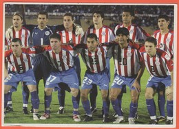 Cartoline - Tematica - Calcio - Nazionale Paraguay Al Campionato Del Mondo Del 2006 - Not Used - Football