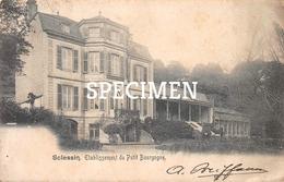 Etablissement Du Petit Bourgogne - Sclessin - Liege