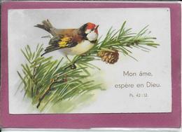 Mon Ame Espère En Dieu - Oiseaux