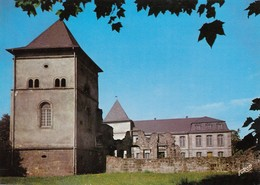 CP DILLINGEN ALLEMAGNE  - SAAR - SARRE - ALTES SCHLOSS - VIEUX CHATEAU - Saarpfalz-Kreis
