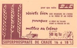 FRANCE - Buvard - Agriculture - Elevage - Le Superphosphate De Chaux 16 à 18% - Agriculture