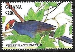 GHANA - MNH - 1994 : Violet Turaco  -  Musophaga Violacea - Cuckoos & Turacos