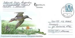 Belarus 2017 Mogilev Common Snipe Gallinago Gallinago Postal Stationary Cover - Kranichvögel