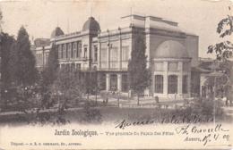 Antwerpen - Anvers: Dierentuin - Zoo - Jardin Zoologique - Vue Generale Du Palais Des Fetes - Animaux & Faune