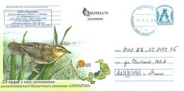 Belarus 2016 Minsk Bird Postal Stationary Cover - Kranichvögel